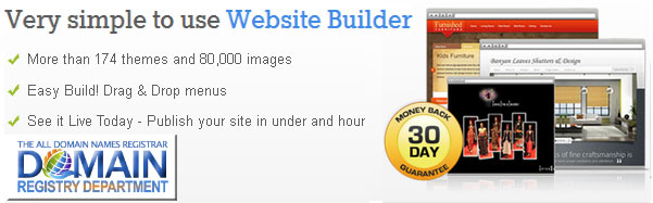Domain website builder